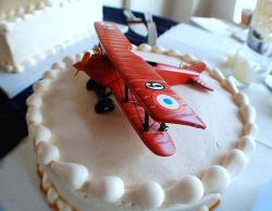 air plan Grooms Cake.jpg