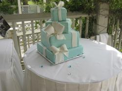 trendy square Wedding cake in blue