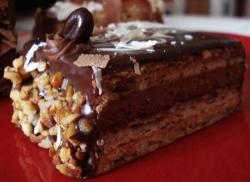 Slice of chocolate cake with nuts.JPG