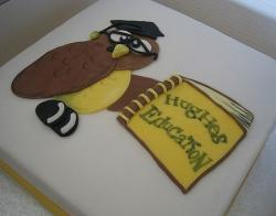 Wise owl graduation cake.JPG