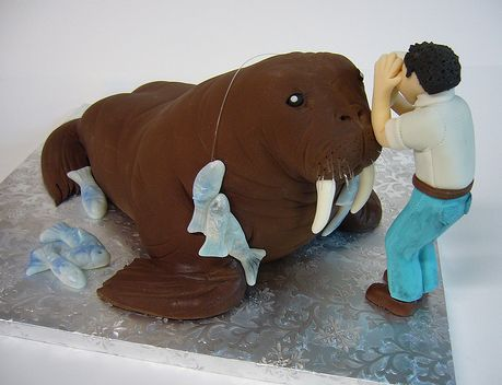 Walrus and fish cake.JPG