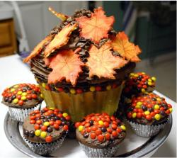 Thanksgiving CupCakes with small cups surrounding a gain cupcake.JPG