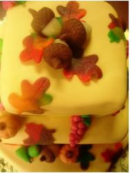 Autumn cake photo.JPG