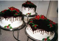 White bottom and tops dark christmas cakes.JPG