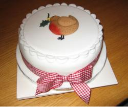 White Christmas cake with bird topper.JPG