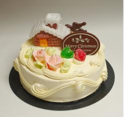 Christmas cake photos.JPG