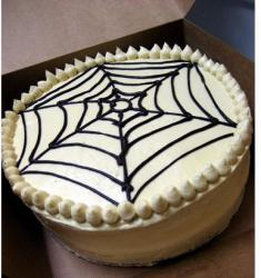 White chocolate halloween cake with spider web.JPG