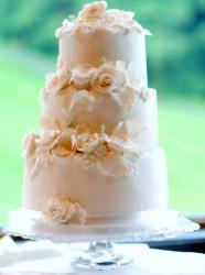 Light Pink 3 Tier Wedding Cake with White Roses.JPG