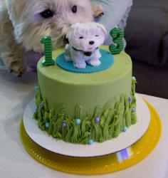 Birthday Cake for Dog in Green Grass color with Likeness of Dog as topper.JPG