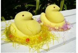 Chick easter cake photos.JPG