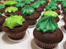 Chocolate cupcakes with green frosting.JPG