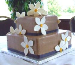 Two tier chocolate cake with faux white flowers.JPG