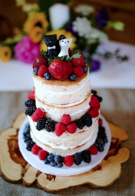Small Wedding Cake With Black White Cat Toppers Jpg Hi Res 720p Hd