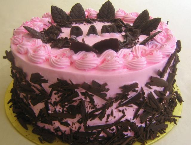 Pink and chocolate ice cream cake with chocolate leaves.JPG