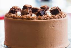 Chic chocolate ice cream cake photos.JPG