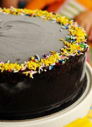 Deep dark chocolate ice cream cakes photos.JPG