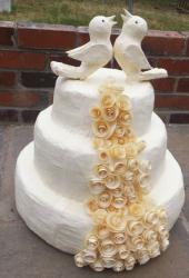 White wedding pinata cake with roses and birds cake topper.JPG