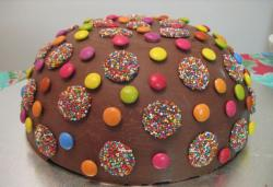 Chocolate m & m cake photo.JPG