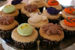 Halloween cupcakes with many different hallowen cupcake toppers.JPG