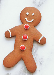 Professional looking gingerbread man photos.PNG