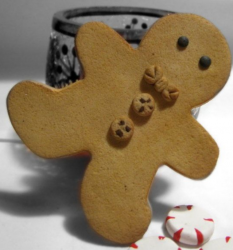 Prossional looking gingerbread men cookie.PNG