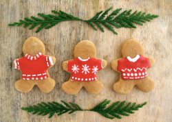 2015 cool gingerbread men cookies in Christmas sweat shirts.PNG