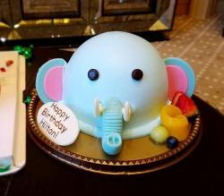 Elephant Head Birthday Cake.JPG