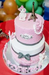 France Paris Theme 2 Tier Pink and White Birthday Cake with Eiffel Tower & Poodle.JPG