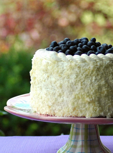 Blueberry cake with coconut.jpg