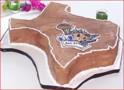 Chocolate Texas shaped Groom's Cake.jpg
