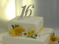 16 anniversary cake topper picture.PNG