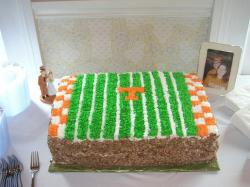 orange and green Groom cake.jpg