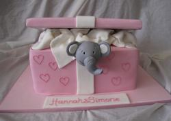 Baby elephant in pink box christening cake.JPG