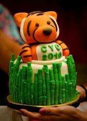 Baby tiger and bamboo cake.JPG