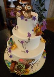 Tri-tier round white wedding cake with birds and flowers and owl pair toppers.JPG