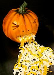 Halloween pumpkin cake throwing up seeds.JPG