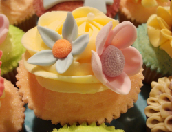 Floral cupcake picture.PNG