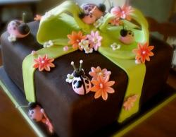Brown gift box cake with green bow and pink flowers and ladybugs.JPG
