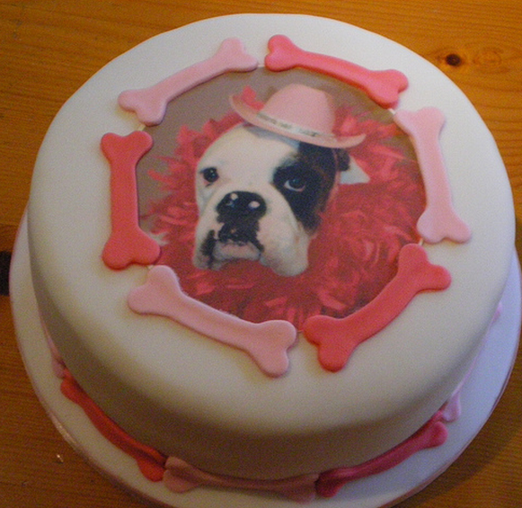 Boxer Dog Birthday Cake PicturesPNG