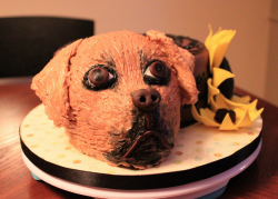 Dog birthday cake mix.PNG