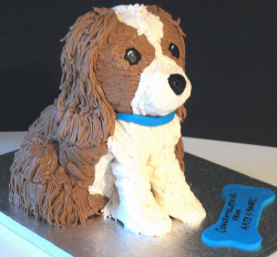 Birthday Cake on Dog Birthday Cakes Pictures Gallery