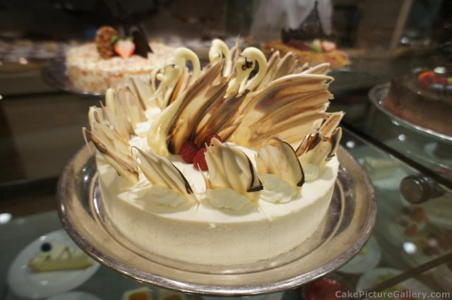 White Chocolate Cake With Choco Swans On Top Jpg Hi Res
