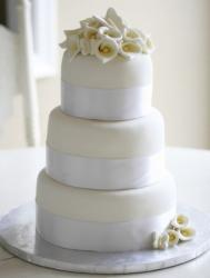 Tri tier round ivory wedding cake with silver bands and dough flowers and butterflies.JPG