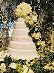 Pierce Brosnan wedding cake image.PNG