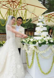Tony Leung & Carina Lau's Wedding cake.PNG