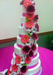 Seven tier round white wedding cake with pink bands and cascading pink and white flowers.JPG
