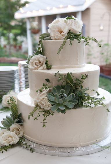 wedding cake succulents tri tier white wedding cake with succulents and 25813