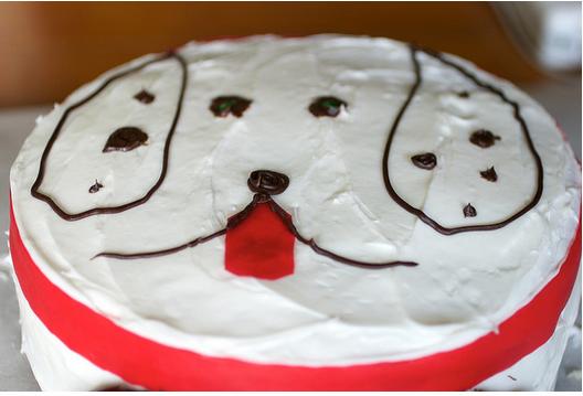 Homemade Dog Birthday Cake Ideas Png