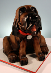 Picture of a Bloodhound dog cake.PNG