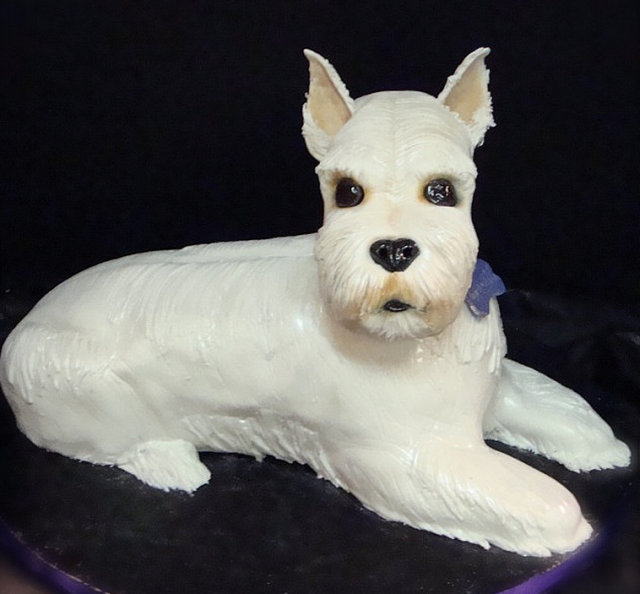 Picture of a dog shaped birthday cake_mini schnauzer dog ...